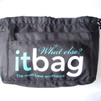 The It Bag: What else?