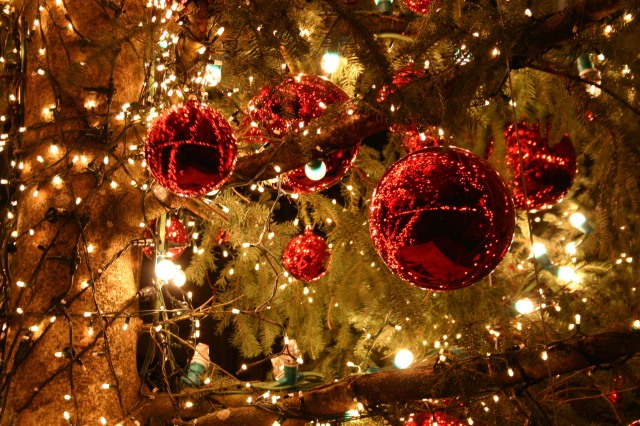 Kerst groeten 2012